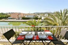 Apartment in Port d´Alcudia at 230 m from the beach