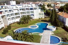 Apartment in Alcocebre / Alcossebre at 500 m from the beach