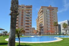 Apartment with swimming pool in Tomás Maestre area